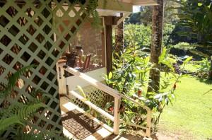 gardenstudio6
